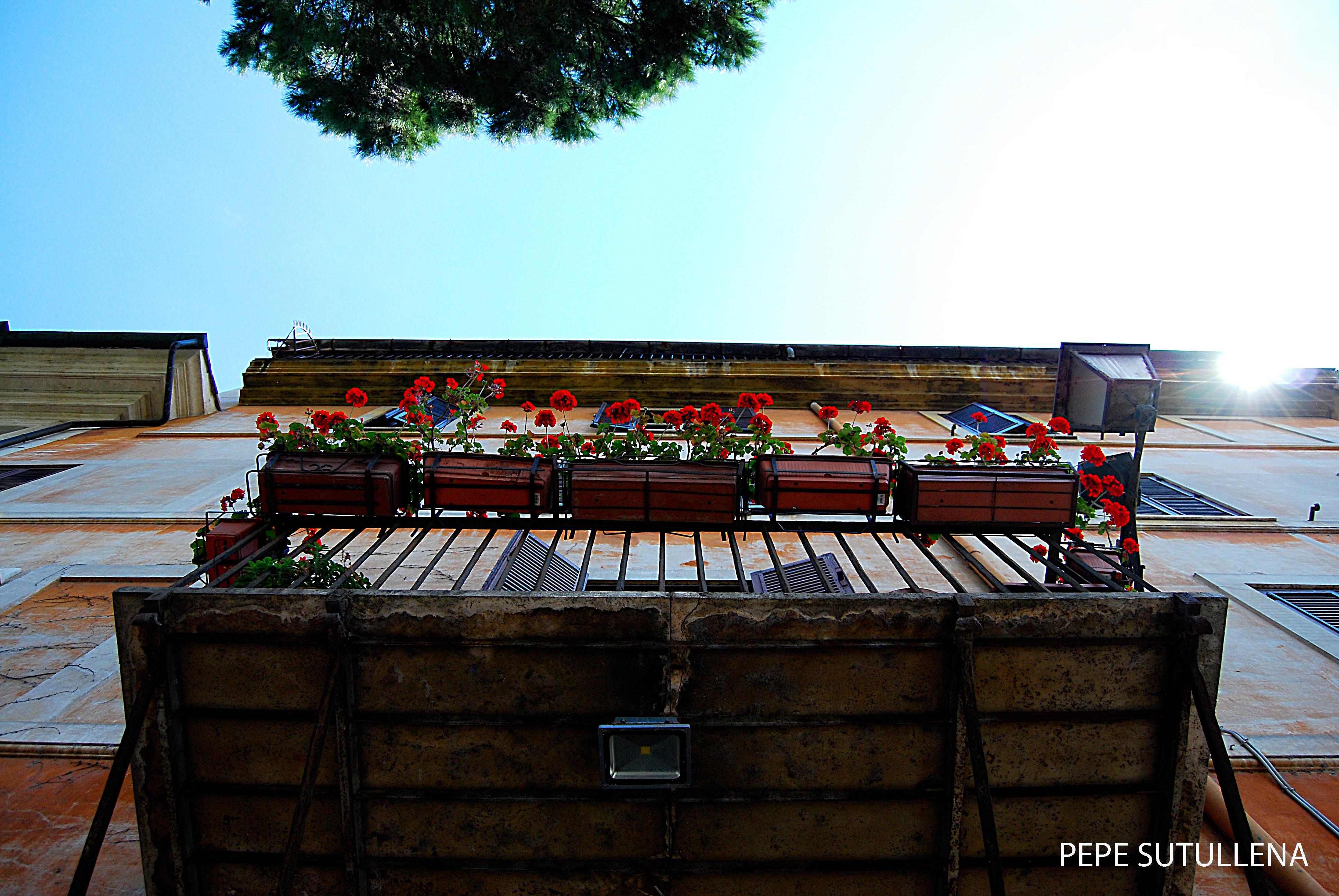 Balcones sobre Via Giulia