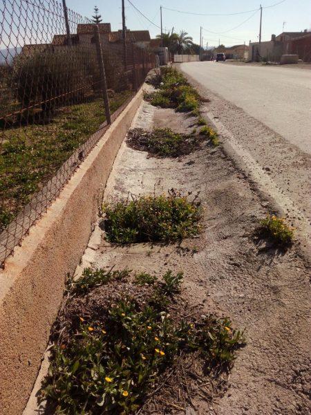 """IU-V reclama """"la seguridad vial y el alumbrado"""" que demandan los vecinos del camino Felí"""