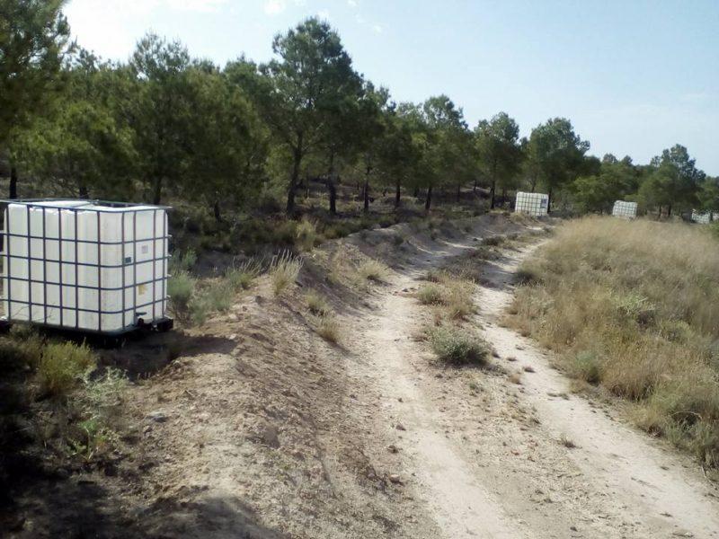 Bosqueo2 denuncia que les han robado los depósitos con los que riegan los árboles plantados