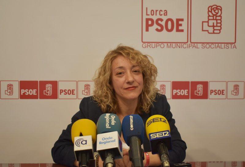 """El PSOE vuelve a reclamar """"más zonas de sombra"""" en colegios e institutos """"para combatir las altas temperaturas"""""""