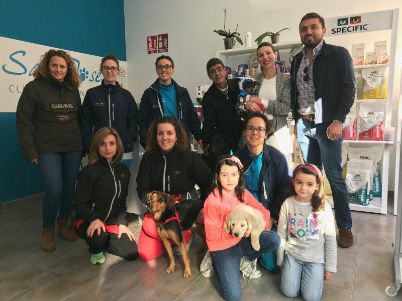 Casi 600 mascotas podrán beneficiarse de una campaña de chipado gratuito